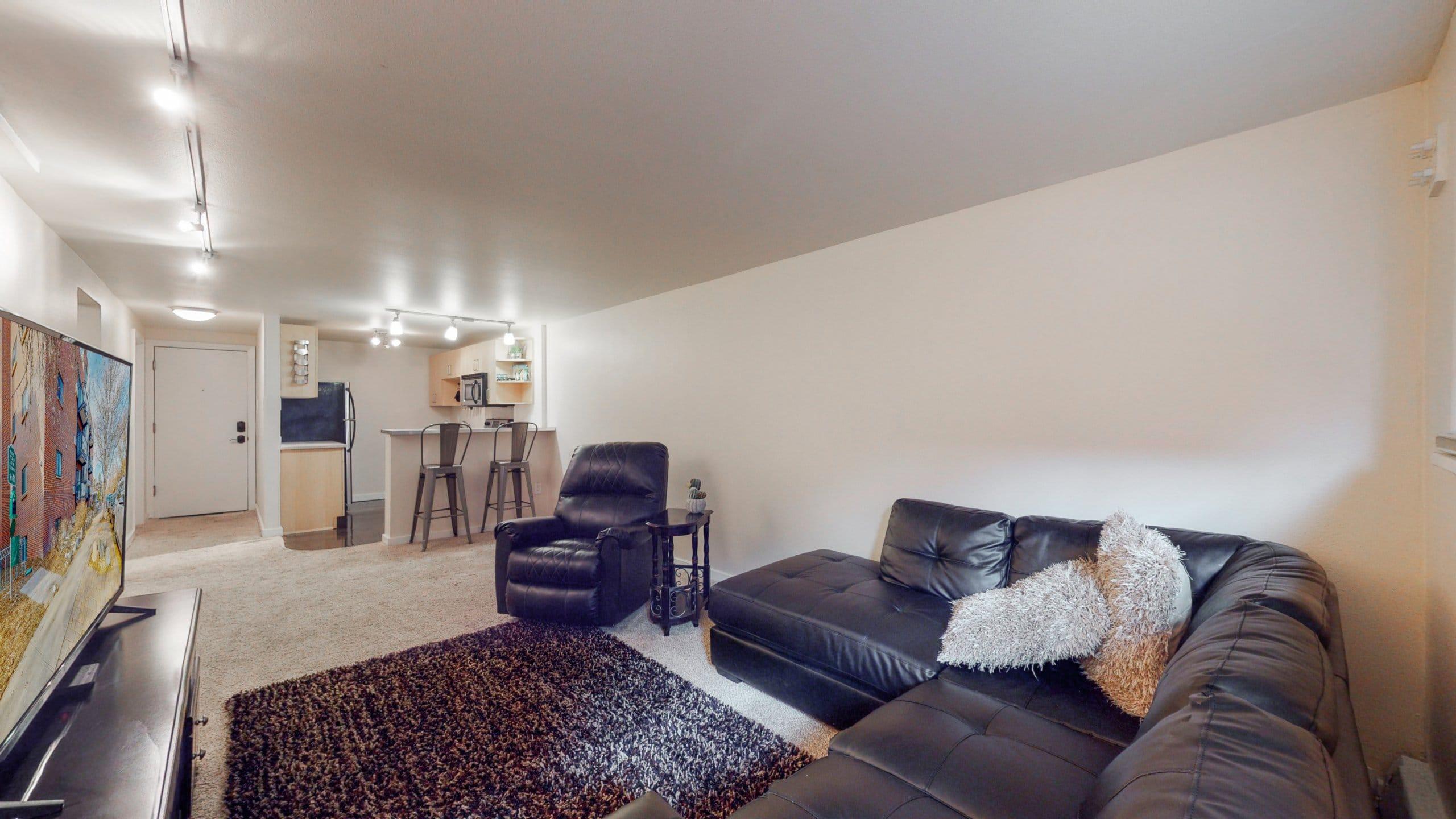 Congress Park Condo For Sale Living Room