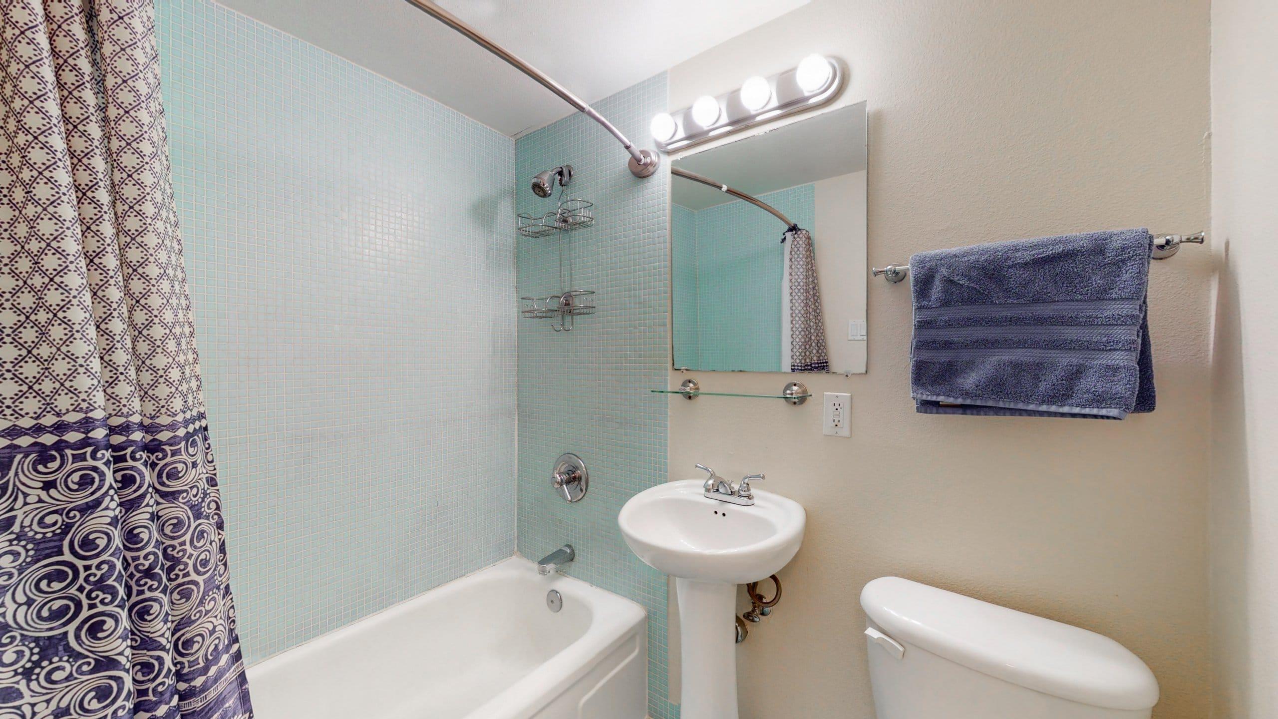 Congress Park Condo For Sale Master Bathroom