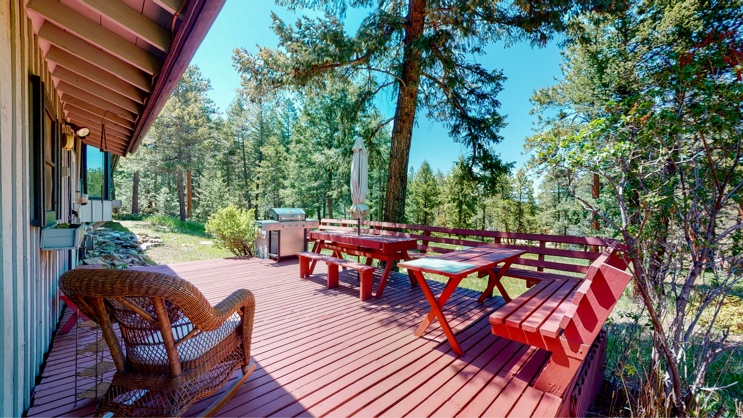 Back deck overlooking a forest of pine trees